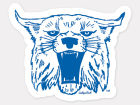 Kentucky Wildcats Wincraft 4x4 Die Cut Decal Color Bumper Stickers & Decals