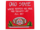 Ohio State Buckeyes Tailgate Board Collectibles