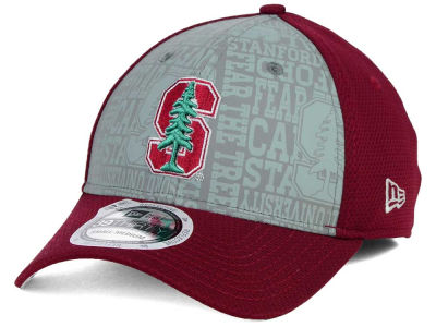 Stanford Cardinal NCAA Reflective Training Mesh 39THIRTY Cap Hats