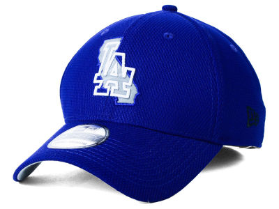 Los Angeles Dodgers MLB State Flective 39THIRTY Cap Hats