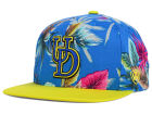 Delaware Blue Hens Top of the World NCAA Waverunner Snapback Hat Adjustable Hats