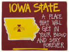 Iowa State Cyclones Map Board Collectibles