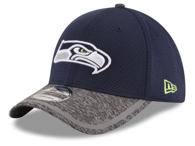 Seattle Seahawks 2016 NFL Training 39THIRTY Cap Hats