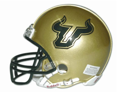 South Florida Bulls NCAA Mini Helmet