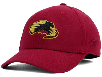 Denver Pioneers Top of the World NCAA Team Color PC Cap