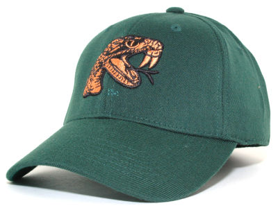 Florida A&M Rattlers Top of the World NCAA Team Color PC Cap