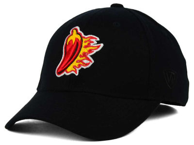 Louisiana Ragin' Cajuns Top of the World NCAA Team Color PC Cap