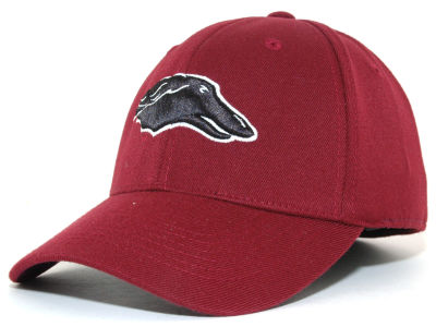 Southern Illinois Salukis Top of the World NCAA Team Color PC Cap
