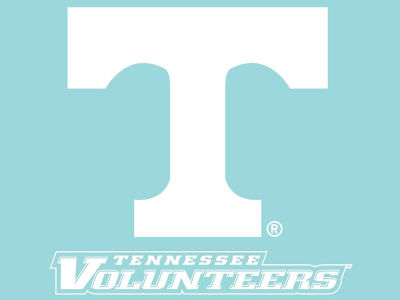 "Tennessee Volunteers Die Cut Decal 8""x8"""