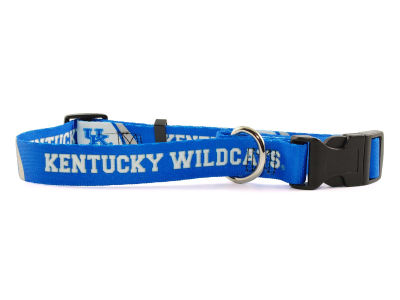 Kentucky Wildcats Medium Dog Collar