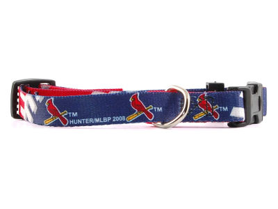 St. Louis Cardinals Small Dog Collar