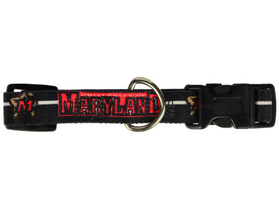 Maryland Terrapins Small Dog Collar