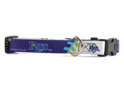 Tampa Bay Rays Small Dog Collar