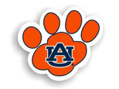Auburn Tigers 8in Car Magnet