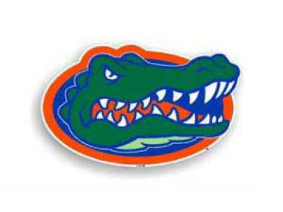 Florida Gators 8in Car Magnet