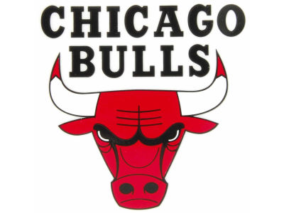 Chicago Bulls Static Cling Decal