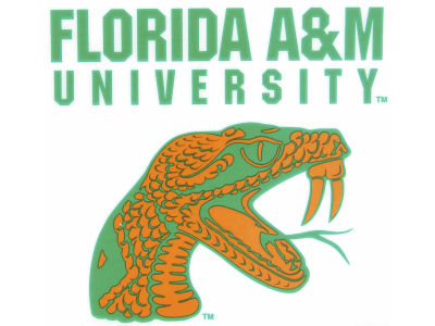 Florida A&M Rattlers Static Cling Decal