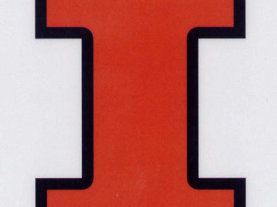 Illinois Fighting Illini Static Cling Decal