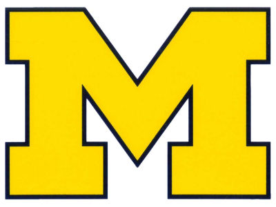 Michigan Wolverines Static Cling Decal