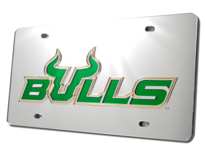 South Florida Bulls Laser Tag