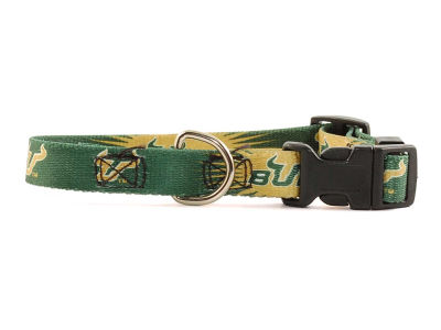 South Florida Bulls Dog Collar