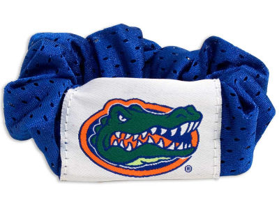 Florida Gators Hair Twist