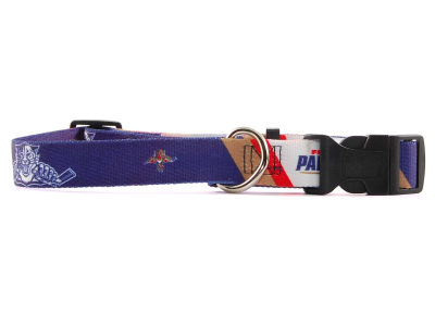 Florida Panthers Large Dog Collar