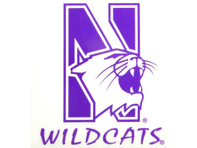 Northwestern Wildcats Static Cling Decal