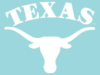 "Texas Longhorns Die Cut Decal 8""x8"""