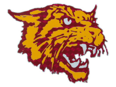 Bethune Cookman University Wildcats Vinyl Decal