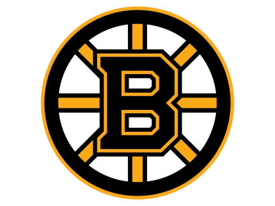 Boston Bruins 8in Car Magnet