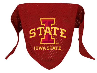 Iowa State Cyclones Pet Bandana L/XL
