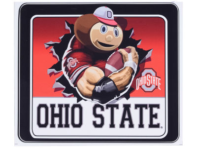 Ohio State Buckeyes Moveable 8x8 Decal