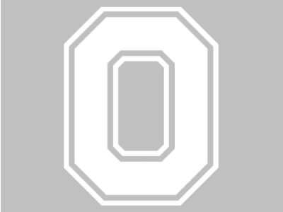 Ohio State Buckeyes 3x5 Decal