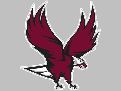 North Carolina Central University Eagles Vinyl Decal