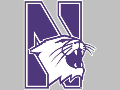 Northwestern Wildcats Vinyl Decal