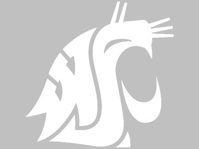 Washington State Cougars Vinyl Decal