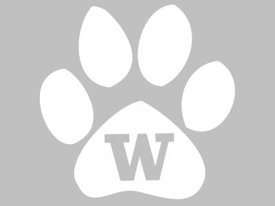 Washington Huskies 3x5 Decal