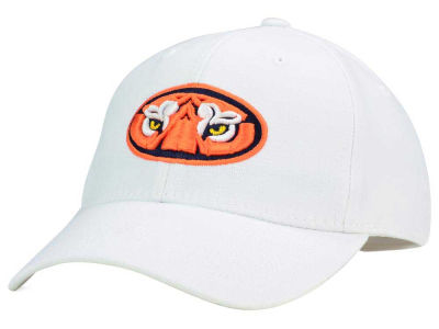 Auburn Tigers Top of the World NCAA White PC Cap