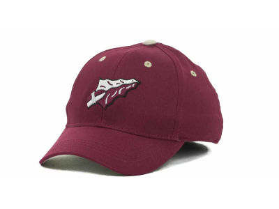 Florida State Seminoles Top of the World NCAA Kids Onefit Cap