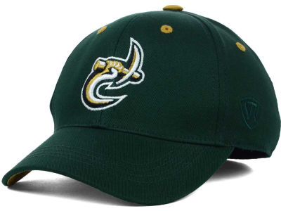 Charlotte 49ers Top of the World NCAA Kids Onefit Cap