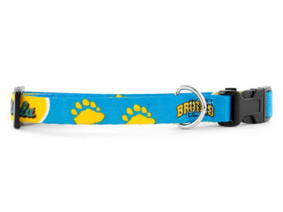 UCLA Bruins Large Dog Collar