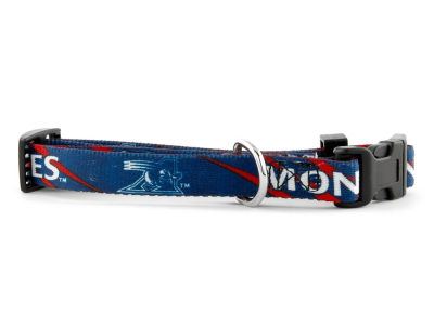 Montreal Alouettes Medium Dog Collar