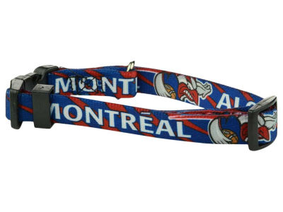 Montreal Alouettes CFL Pet Collar-Small