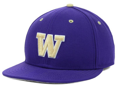 Washington Huskies Nike NCAA Nike Team Sports Authentic Fitted Baseball Cap