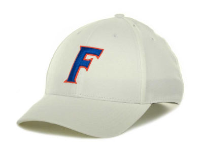 Florida Gators Nike NCAA Dri-Fit Swooshflex Cap