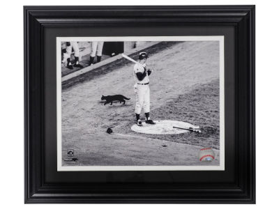 Chicago Cubs Ron Santo Ron Santo Framed Unsigned Black Cat 8x10 Photo