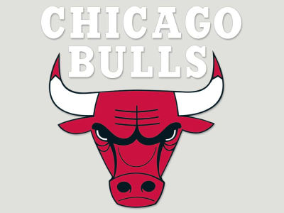 Chicago Bulls Die Cut Color Decal 8in X 8in