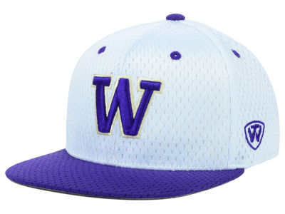 Washington Huskies Top of the World NCAA Mesh Slam One-Fit Cap