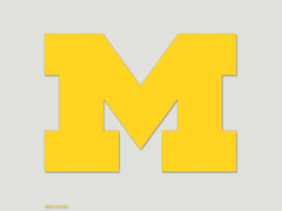 Michigan Wolverines Die Cut Color Decal 8in X 8in